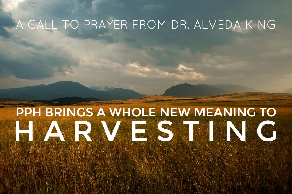 God Harvests Souls, While Satan Harvests Babies