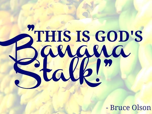 Bruce Olson- Banana Stalk
